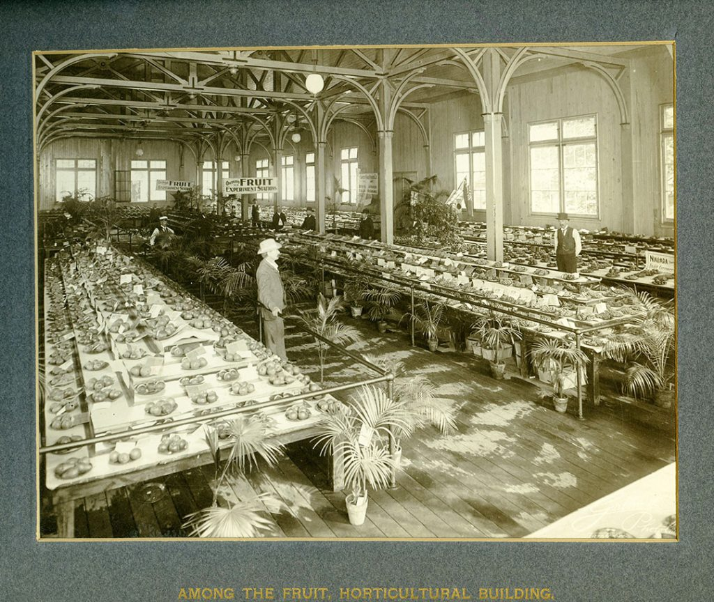 1903 - Fruit and experiment stations in the Horticulture Hall