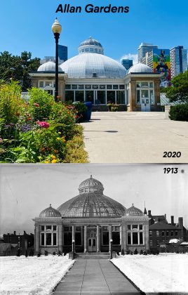 2020/1913 - The Palm House at Allan Gardens